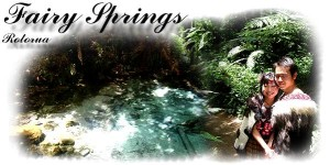 Fairy Springs - Te Puna O Tuhoe - Traditional Maori Wedding Venue